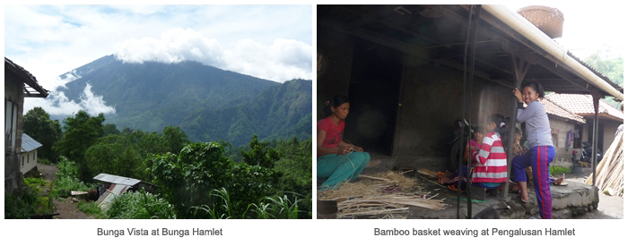 Landscape & bamboo weaving