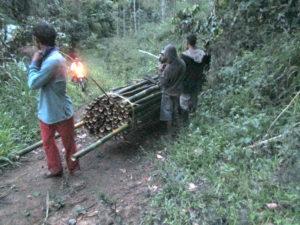 img_1607-poster-rentani-bambu